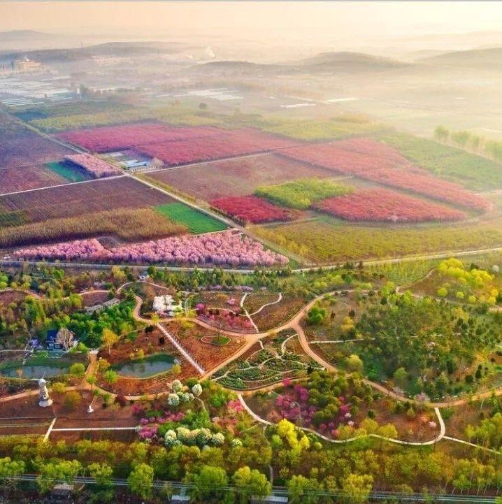 莱阳这个植物园在省里榜上有名!很多莱阳人还不知道……