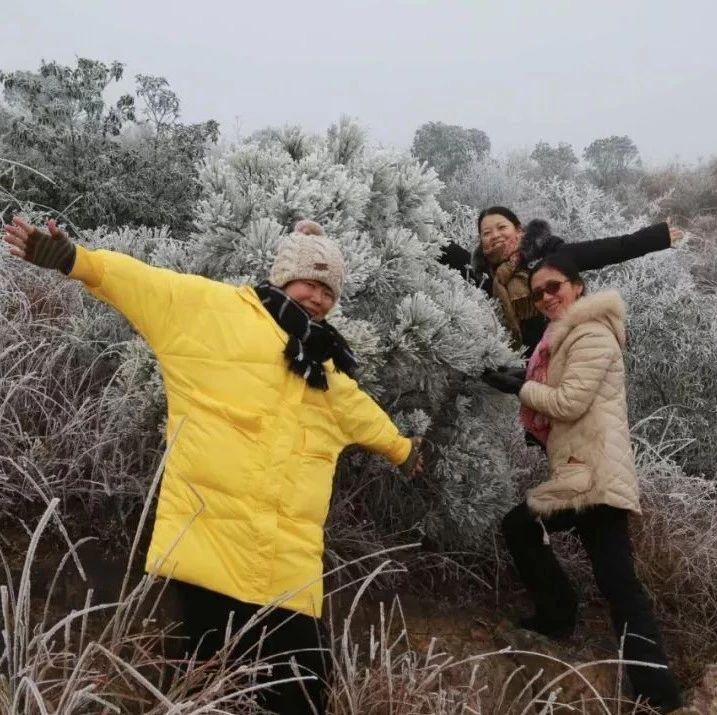 """谁说金沙平台没下雪,咱大金沙平台""""下雪""""了!上图~"""