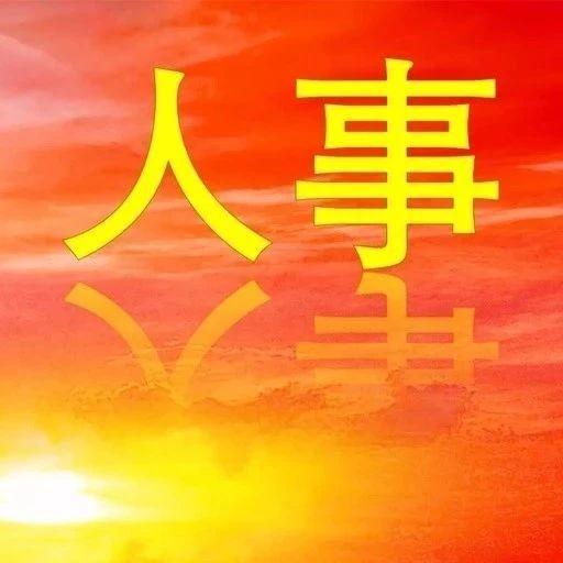 政协第十五届安庆市委员会常务委员会任免名单