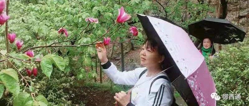 这个春天,郧西知音艺术团带你观赏大美郧西!