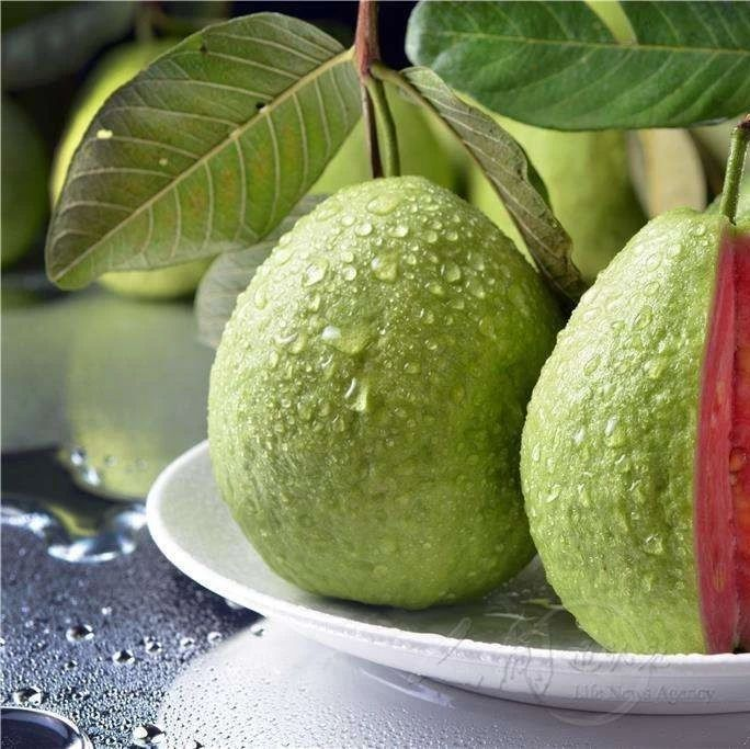 1个它=40个苹果!水果界营养之王,价格却便宜到爆!
