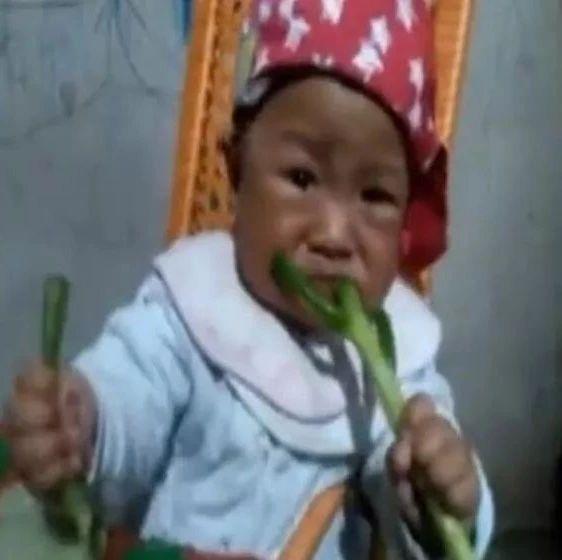 山东8个月萌娃吃大葱!一口一个表情包!山东人爱吃葱,原因竟是…