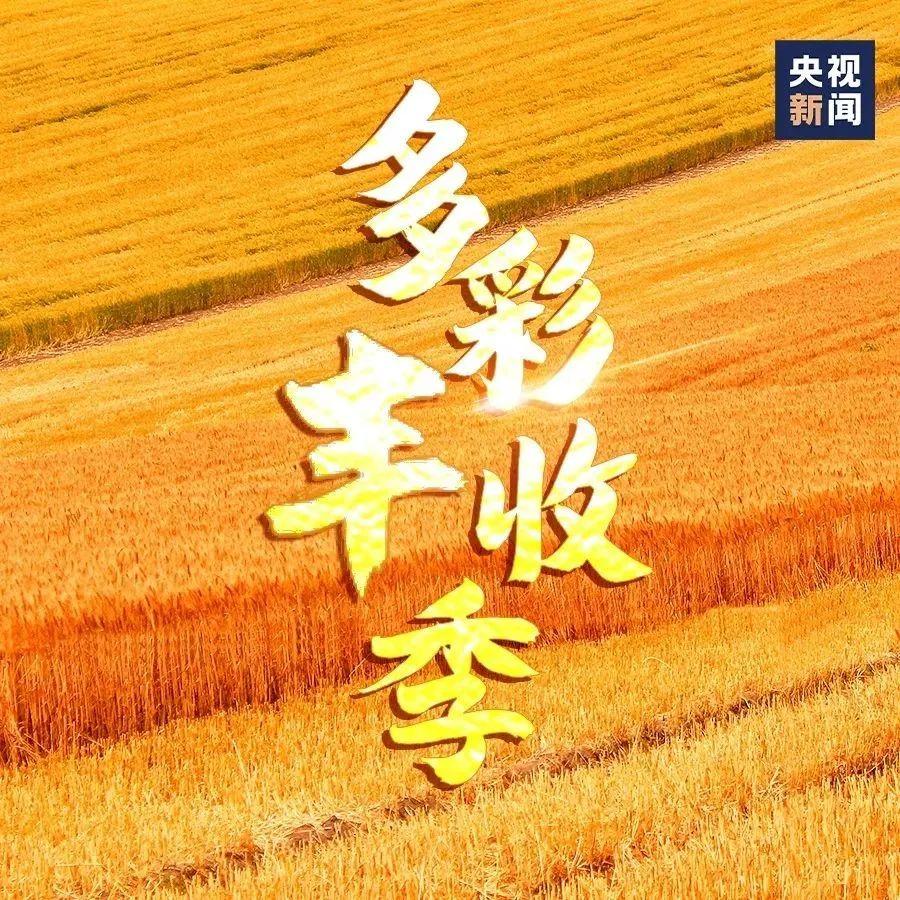 一起庆丰收!9图看中国多彩丰收季
