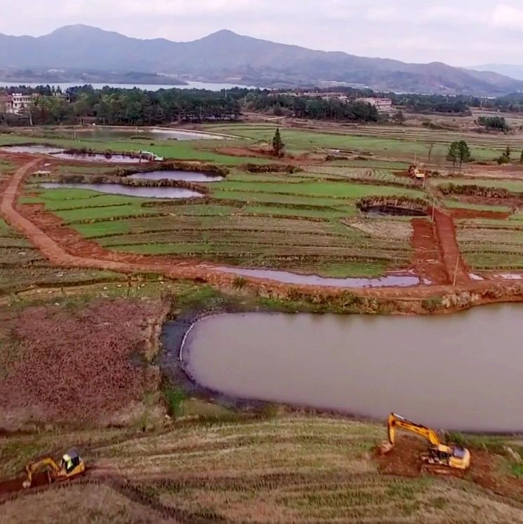 南城县高标准农田建设高效推进