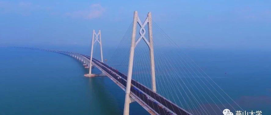 骄傲,举世瞩目的港珠澳大桥通车竟与这个枝江人有关!