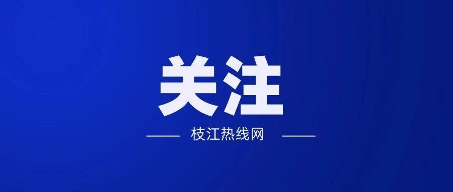 枝江5、8路公交增加车辆和班次