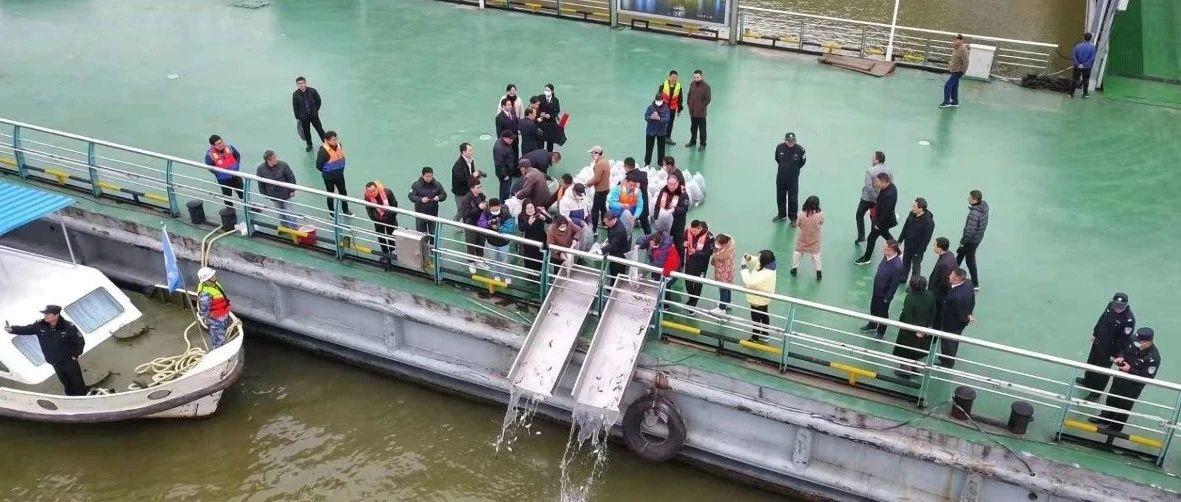 守护长江母亲河!安徽三级检察院参与这场增殖放流活动