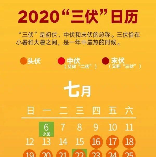 """2020三伏天""""拍了拍""""你,初伏�砼R,你��浜昧��?"""