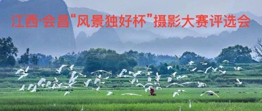 """【�M州�z�f】江西・��昌""""�L景��好杯""""�z影大��u�x�Y束"""