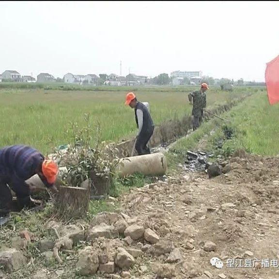 鸦滩镇全力开展农村人居环境整治