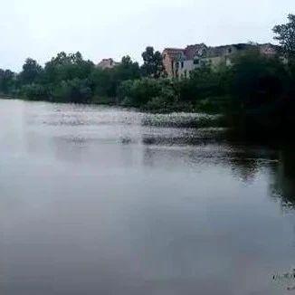 望江幸福河五联圩防洪工程最新进展!已完成投资的65%!