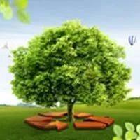 环保世纪行,聚焦环保问题整改