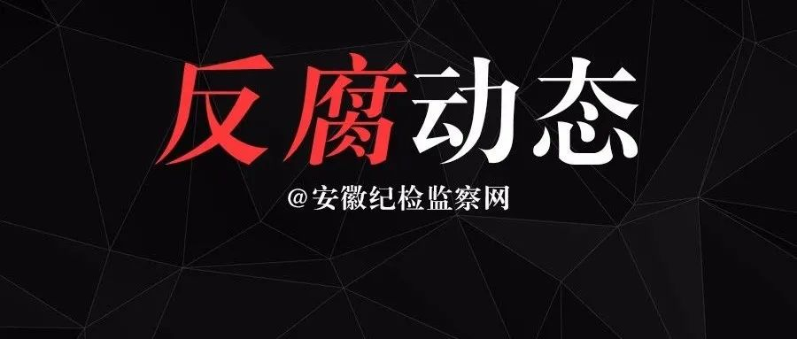 蚌埠市政协原副主席洪斌一审获刑3年零3个月