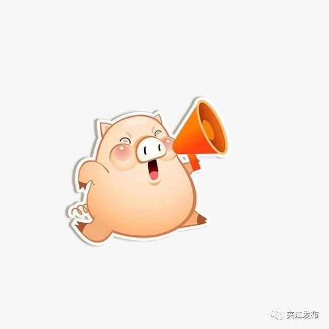 【9月11日】夹江生猪保险理赔进度来啦