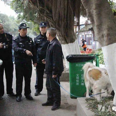 @养狗的朋友们,违规养狗、不文明养狗,这些都要被处罚!