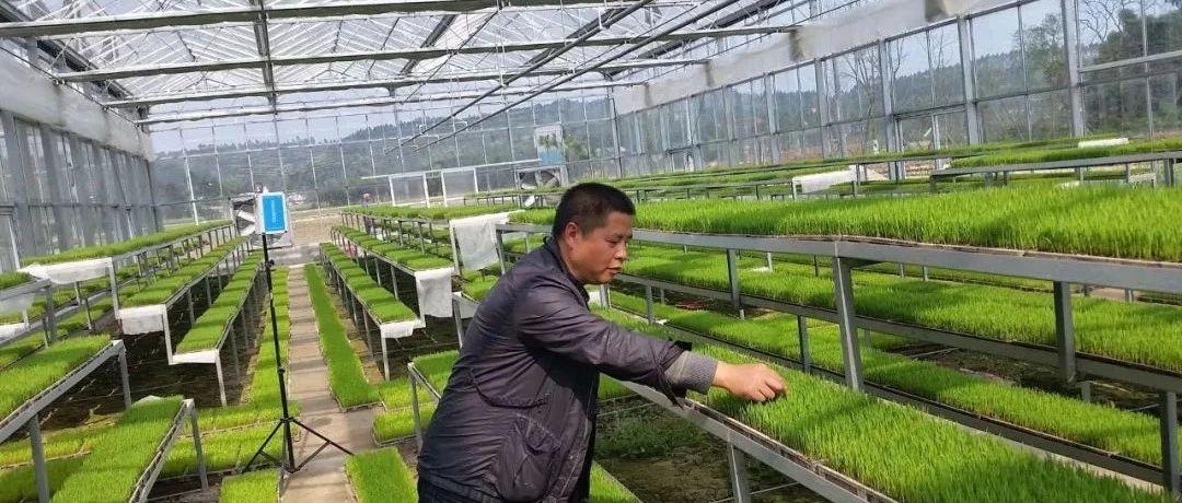 四川新型农业经营主体领军人才――刘海兵
