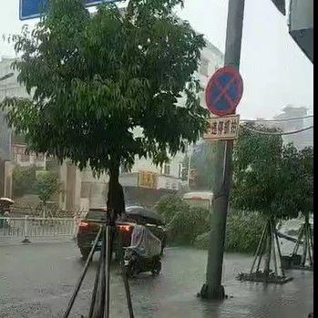 爆料三则|中午暴雨,一棵绿化树倾倒拦在路上,未来几天揭西......