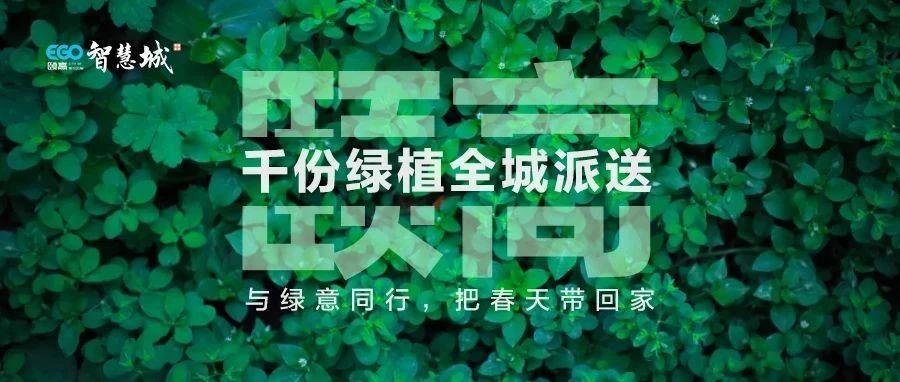 『颐高・智慧城』千份绿植全城免费送,把春天带回家,领取攻略在此~