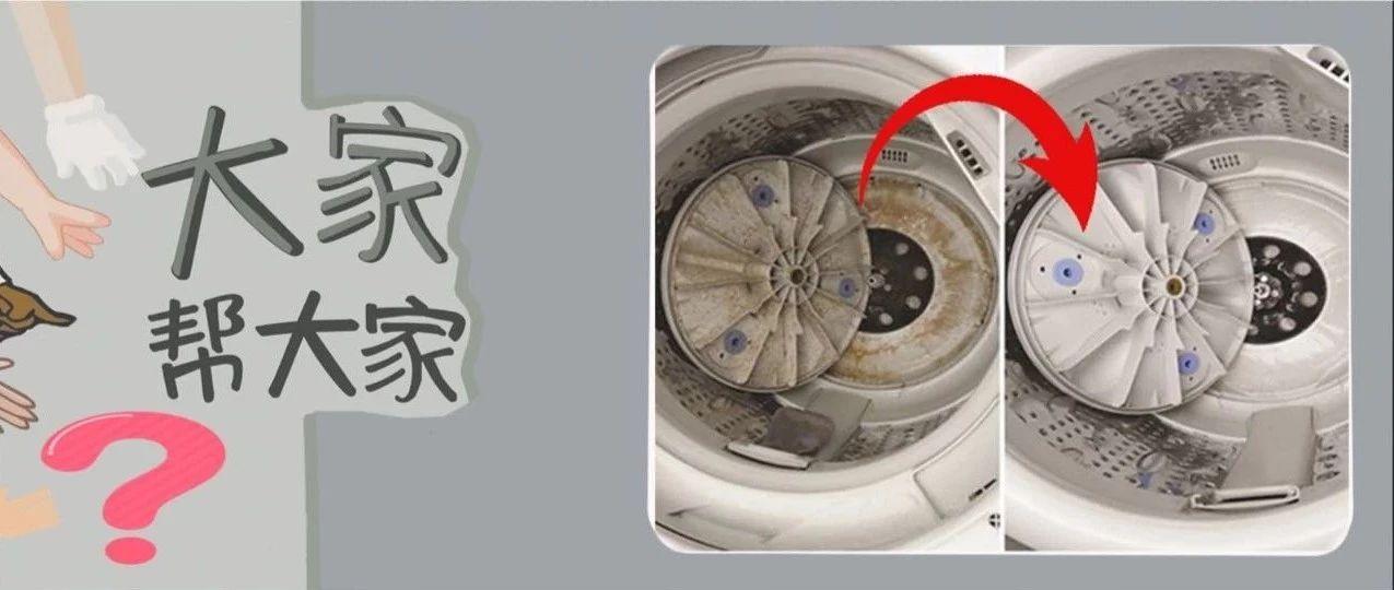 """你的洗衣机竟是个""""细菌窝""""?!家电清洗培训师""""手把手""""教你清洗~"""