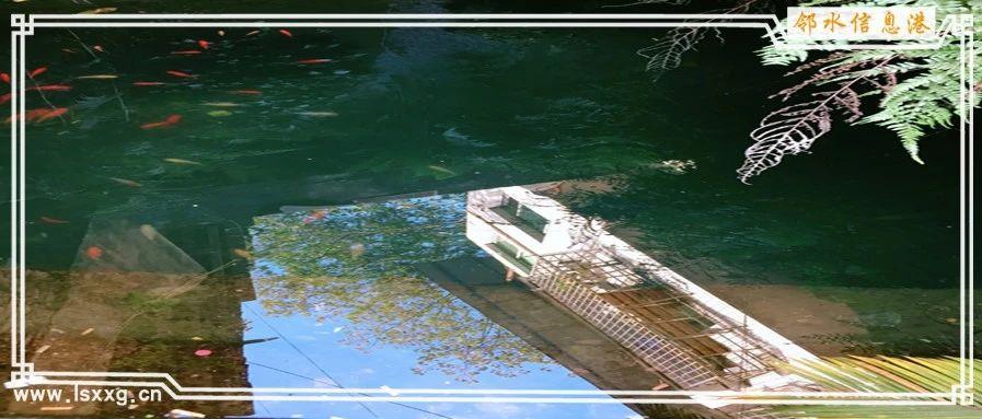 一碗水,藏在邻水银鼎山公园里外的秘境之地,很多人都不知道