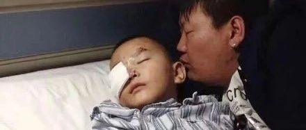 6岁男童被狗咬身亡获赔78万,母亲落泪:管好你的狗
