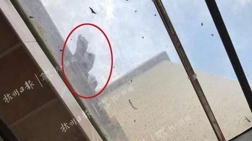 痛心!12岁男孩小区33楼坠亡,出事前邻居曾拍下他在楼顶上的照片并发业主群...