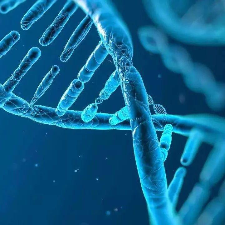 """最新!""""基因编辑婴儿""""事件震惊社会,官方启动伦理调查"""