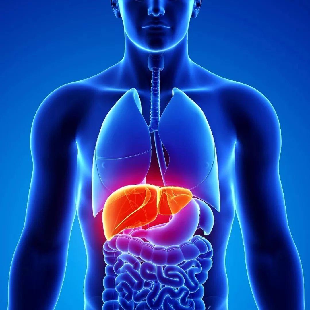 【提醒】这种癌症隐蔽性极强,发现就是晚期?这些症状要警惕