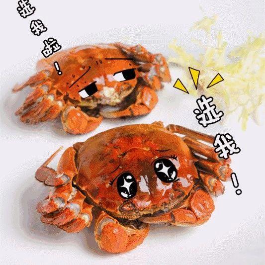 这4个部位不能吃!关于大闸蟹,10个真相了解一下!