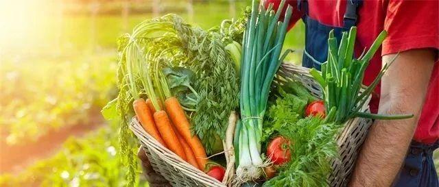 """【健康】网友评""""十大最难吃蔬菜"""",第一名的营养价值却很高"""