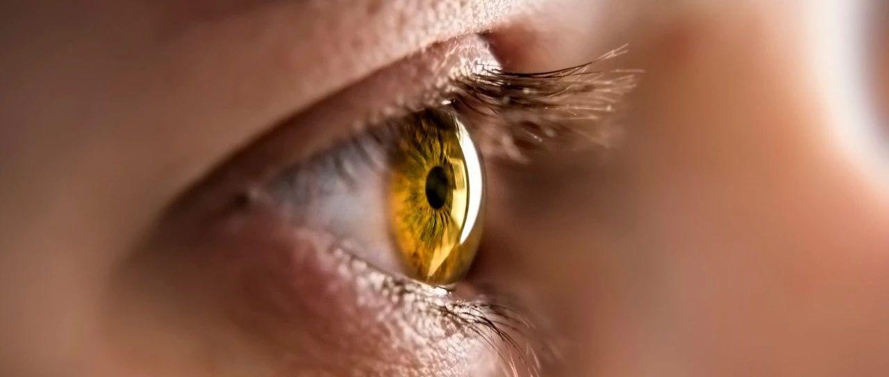 提醒铁力人眼睛出现这些症状一定要重视!每三人中就有一人患病