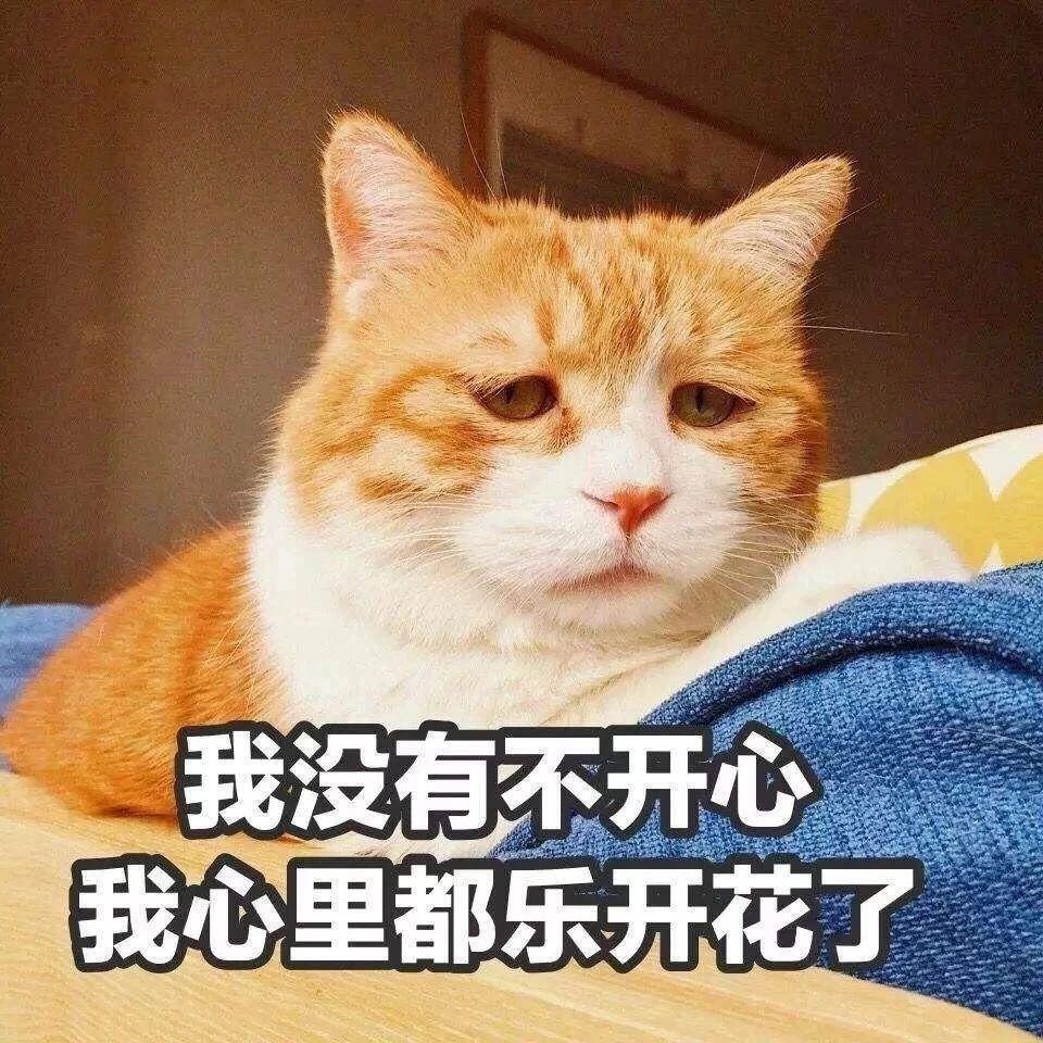 【�]�x】喵!十二生肖里�]有我的姓名,�{什么?