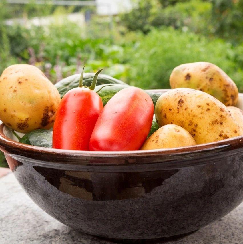 【荐读】土豆千万不能和它一起吃?会中毒?我们常这样搭配