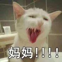 """【荐读】""""北方人这样洗澡?!""""广东男子澡堂狂拍…浴友报警了!"""
