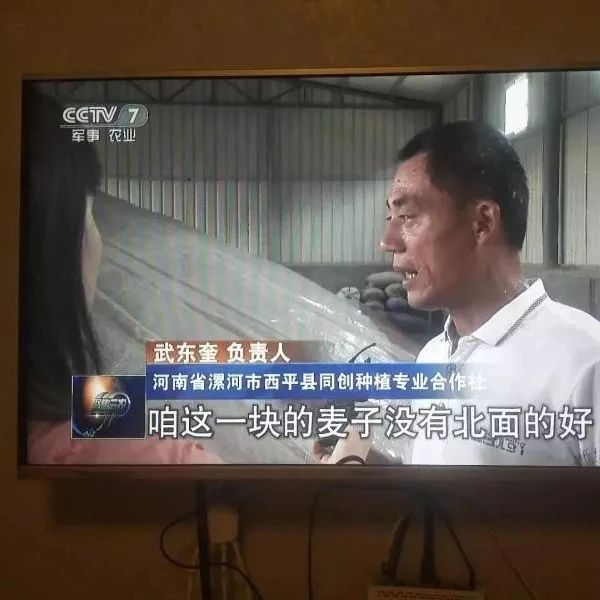 央视新闻闹乌龙:西平归澳门威尼斯人游戏网址了?!