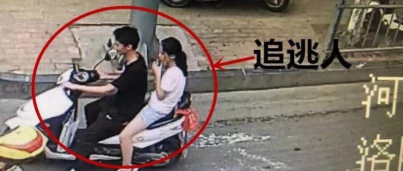 微信追逃令|洛阳交警呼喊粉丝集结◆�d≌,全城追逃此人ㄊ!