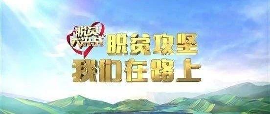 """澳门太阳城官网区实施""""科技+农业""""助力精准脱贫"""