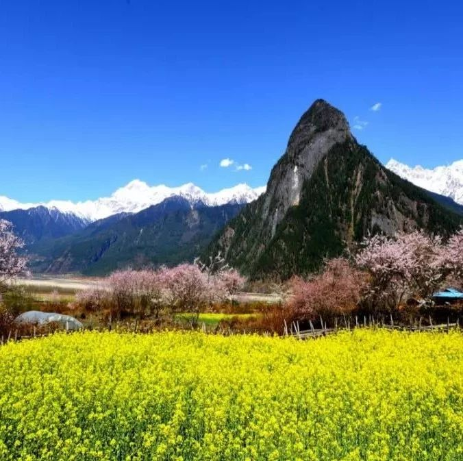 @洮南人,3月最佳旅行地榜�危∈�大�^美仙境,春暖花�_美到窒息~