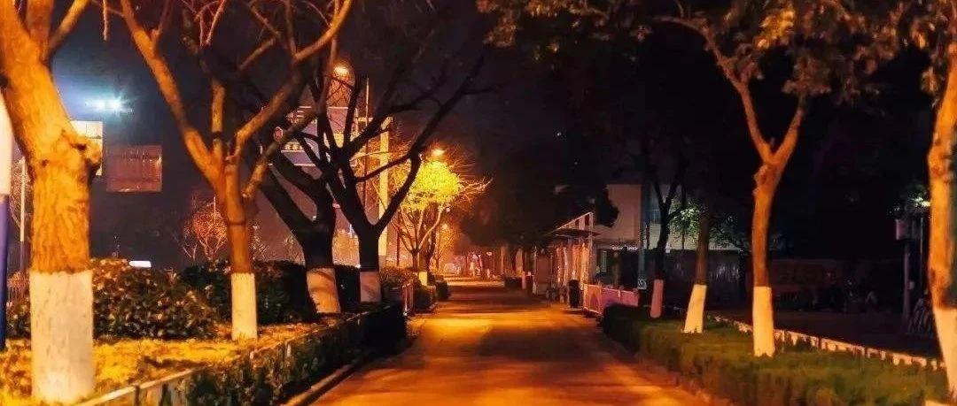 凌晨4点多!发生在汝州街头的一幕...