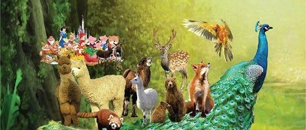 临泉城西要爆满了!萌宠动物、童话剧.....