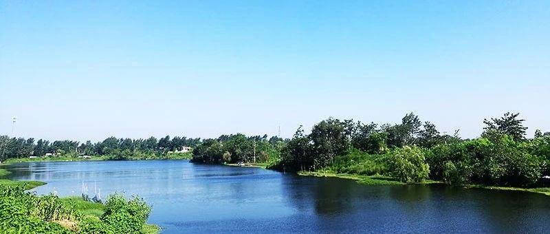 临泉将有40多个公园,遍布全城!!!
