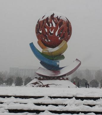 河南多地将迎今冬首场降雪!7级大风+气温狂降12℃,紧接着还有...