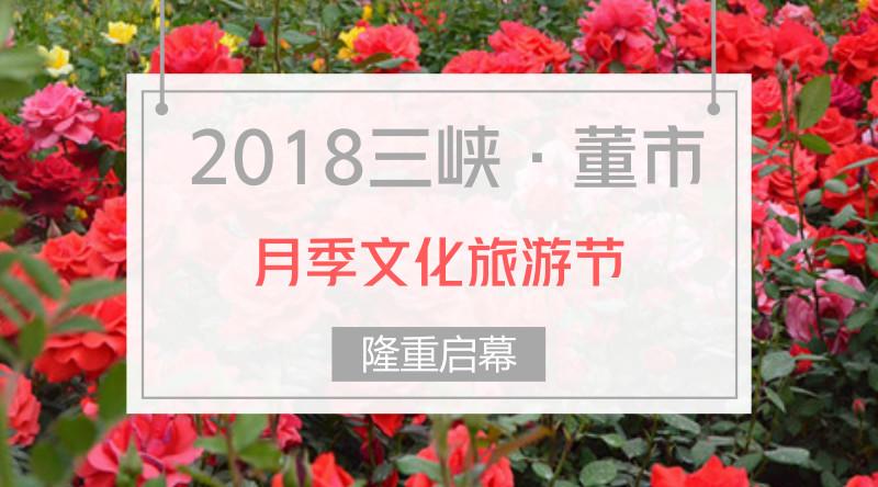 枝江直播台助力董市月季文化节获得圆满成功