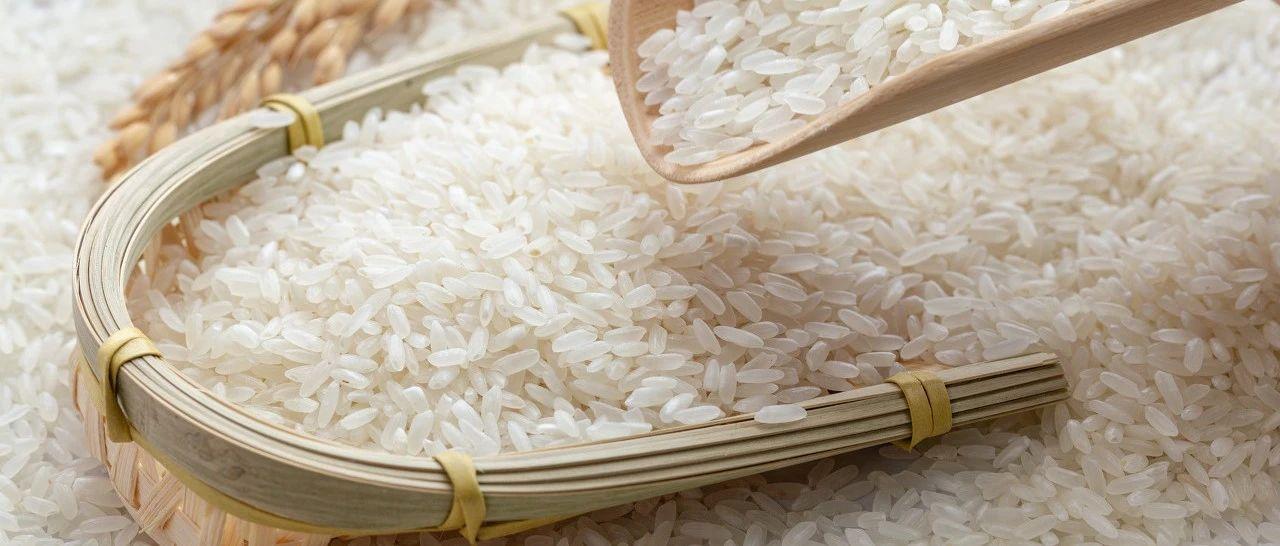 家里的米面为啥凭空出现小虫?吃了会不会传染疾病?阜宁很多人还不知道