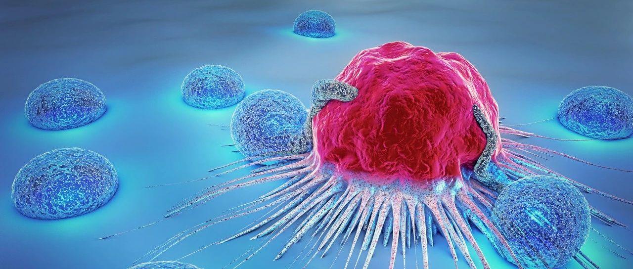青白江哪些人更容易得癌症?肿瘤医生:这五类人!