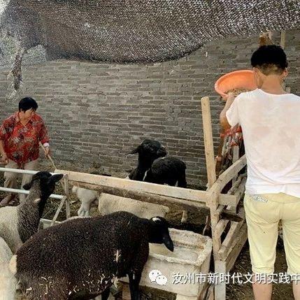 """在汝州市夏店镇黄沟村,提到孟素荣,没有人不说""""中"""""""