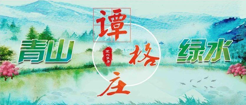 莱阳谭格庄镇每日工作动态2月7日