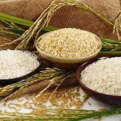 网传有粮食危机要囤米?权威解答来了