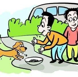 太残忍!潢川邻县发生用毒针、毒丸偷狗,这样狗肉你敢吃吗?