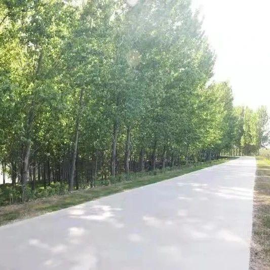 涉及15村!大周要打造29公里沿河景观带!一共12段!段段有游园…